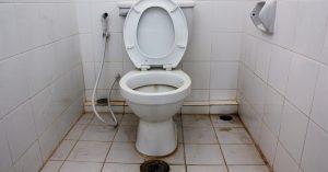 Penyakit Yang Di Sebabkan Oleh Toilet Yang Kotor